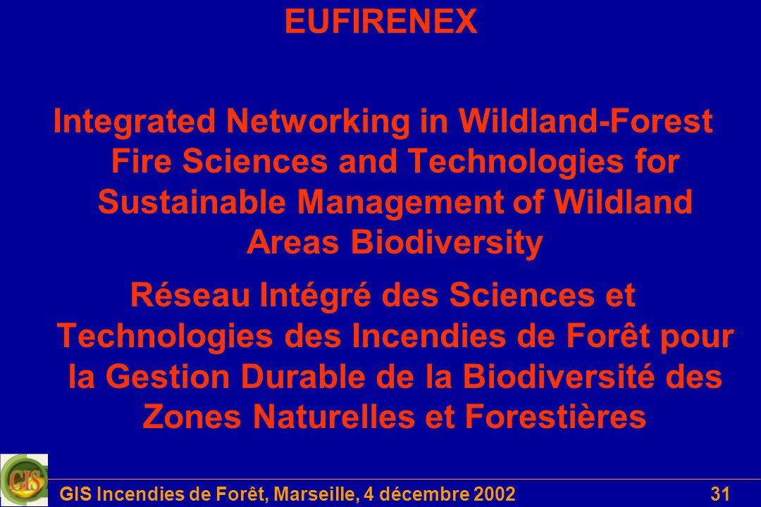 GIS Incendies de Forêt, Marseille, 4 décembre 2002