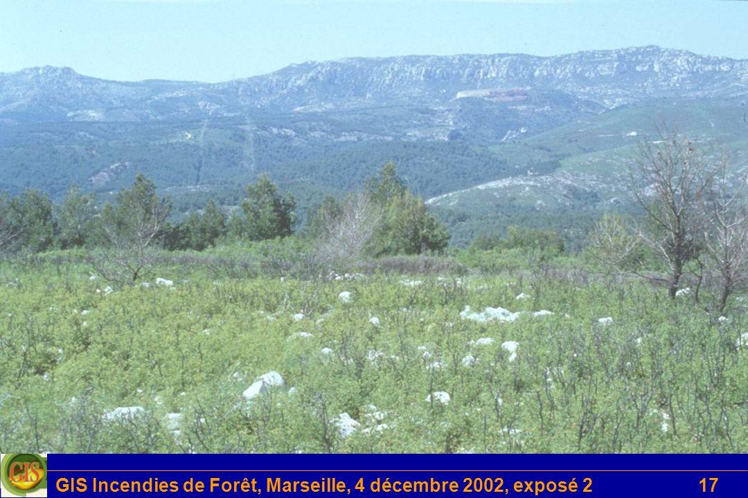 GIS Incendies de Forêt, Marseille, 4 décembre 2002, exposé 2