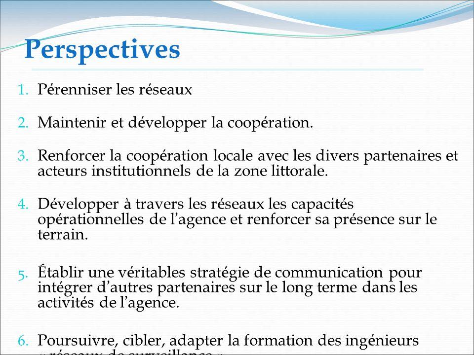 Perspectives Pérenniser les réseaux