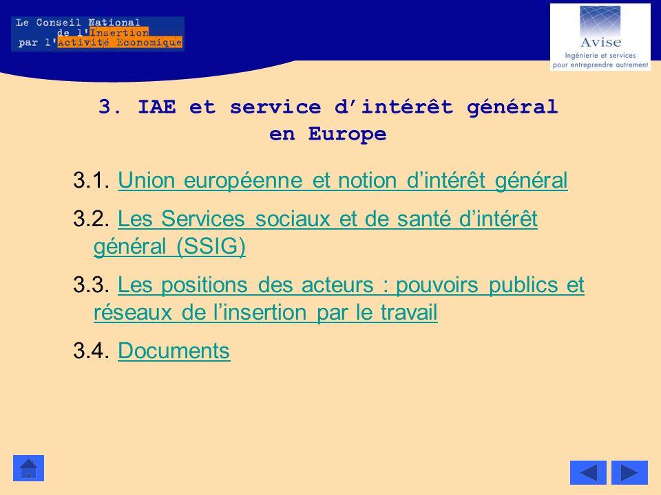 3. IAE et service d'intérêt général en Europe