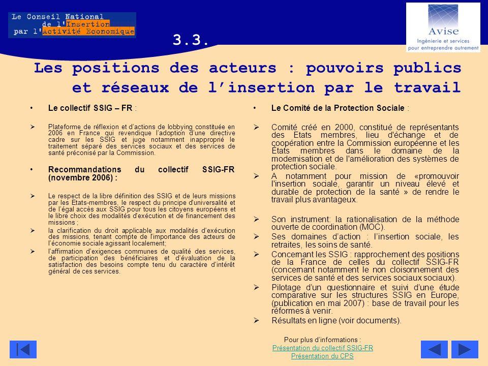 3.3. Les positions des acteurs : pouvoirs publics et réseaux de l'insertion par le travail. Le collectif SSIG – FR :