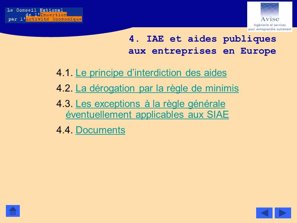 4. IAE et aides publiques aux entreprises en Europe