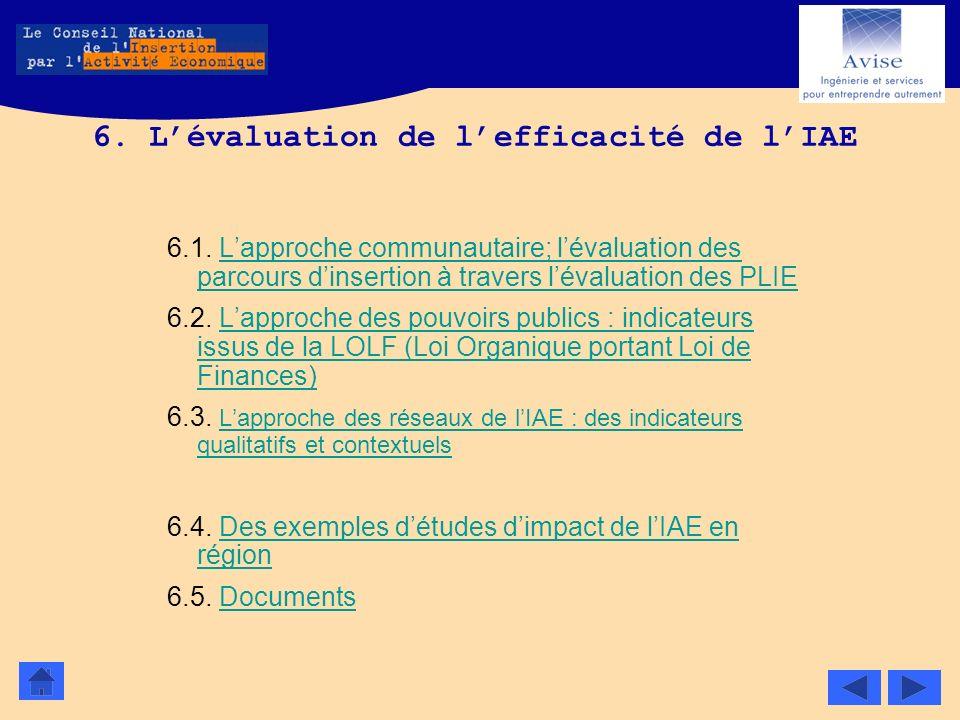 6. L'évaluation de l'efficacité de l'IAE