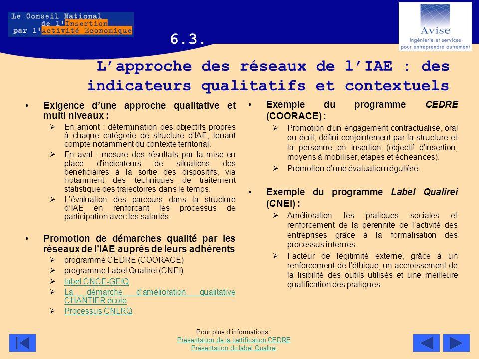 6.3. L'approche des réseaux de l'IAE : des indicateurs qualitatifs et contextuels. Exigence d'une approche qualitative et multi niveaux :