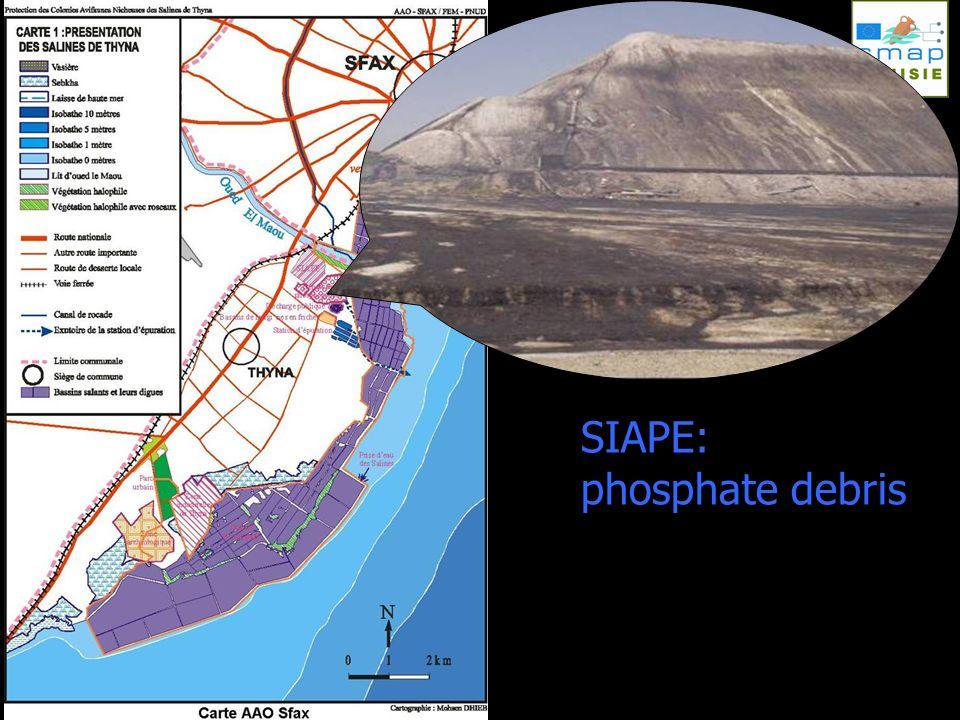 SIAPE: phosphate debris