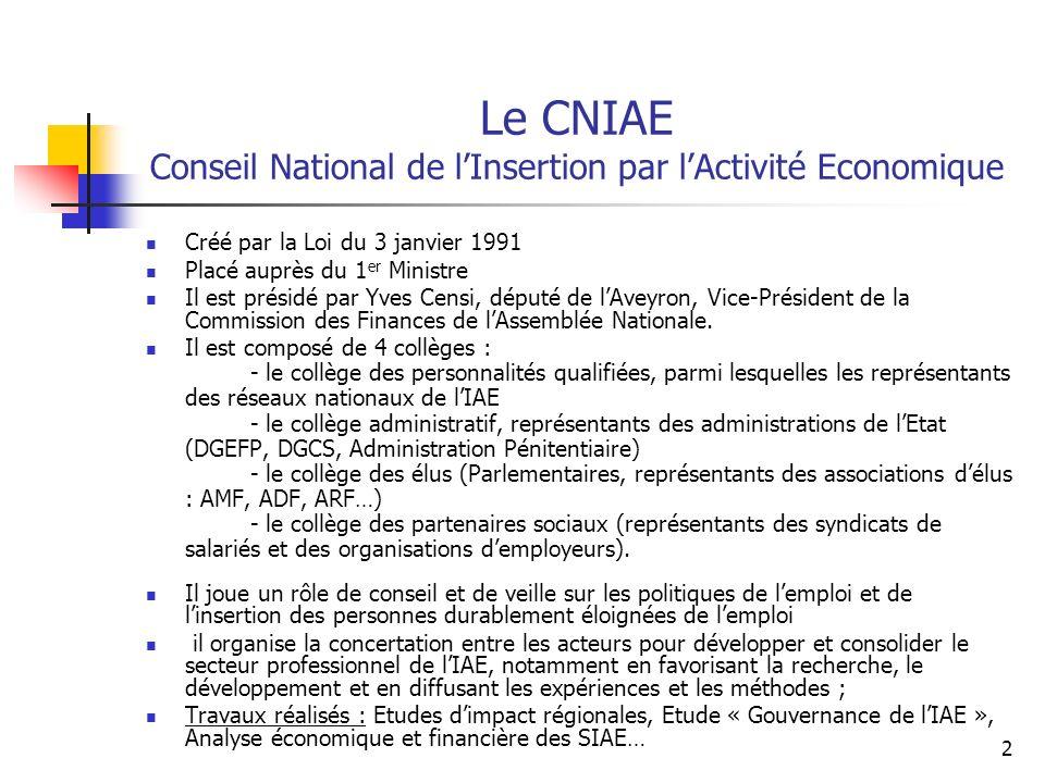 Le CNIAE Conseil National de l'Insertion par l'Activité Economique