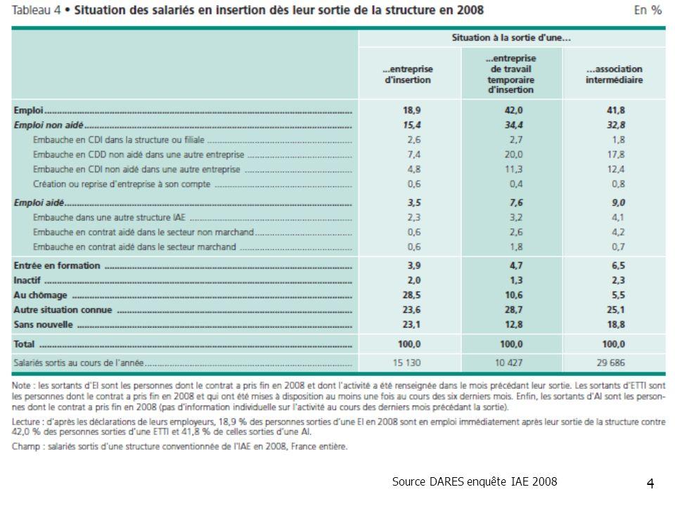 Source DARES enquête IAE 2008