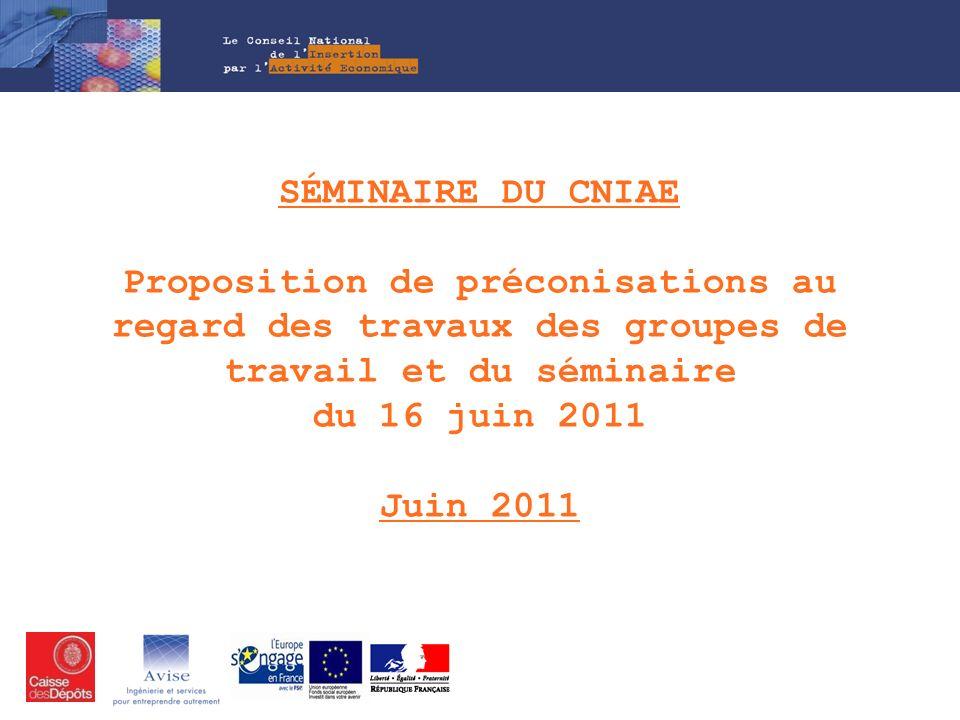 Séminaire du CNIAE Proposition de préconisations au regard des travaux des groupes de travail et du séminaire du 16 juin 2011 Juin 2011