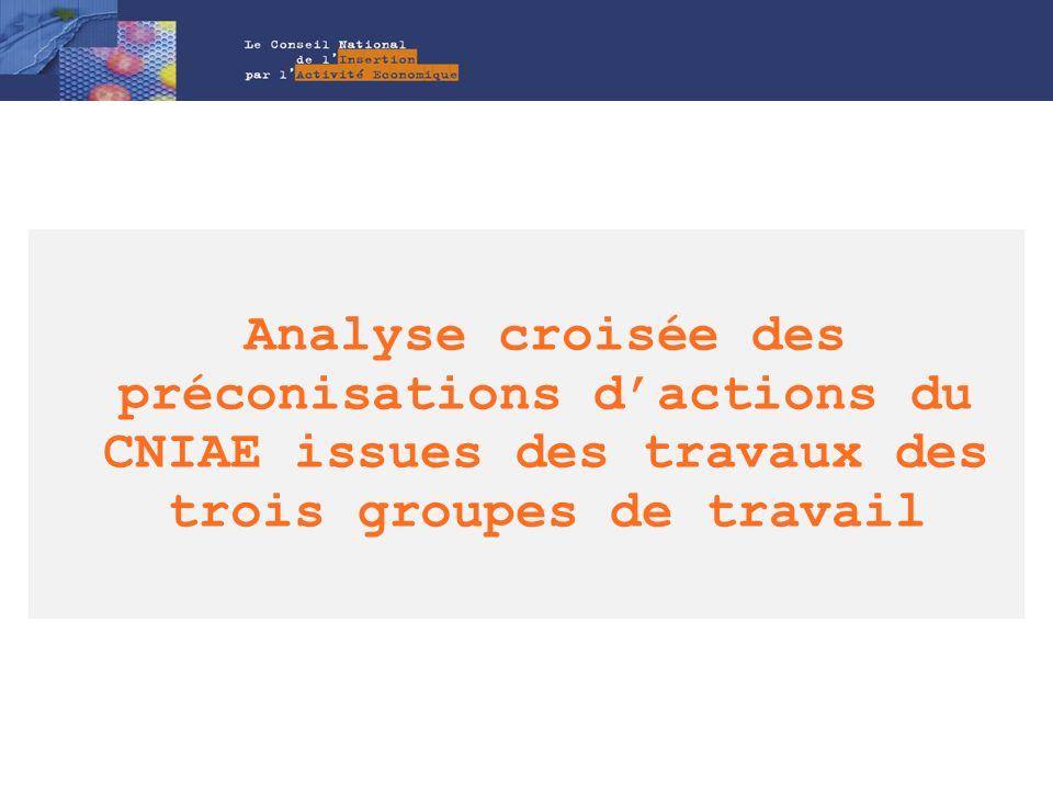 Analyse croisée des préconisations d'actions du CNIAE issues des travaux des trois groupes de travail