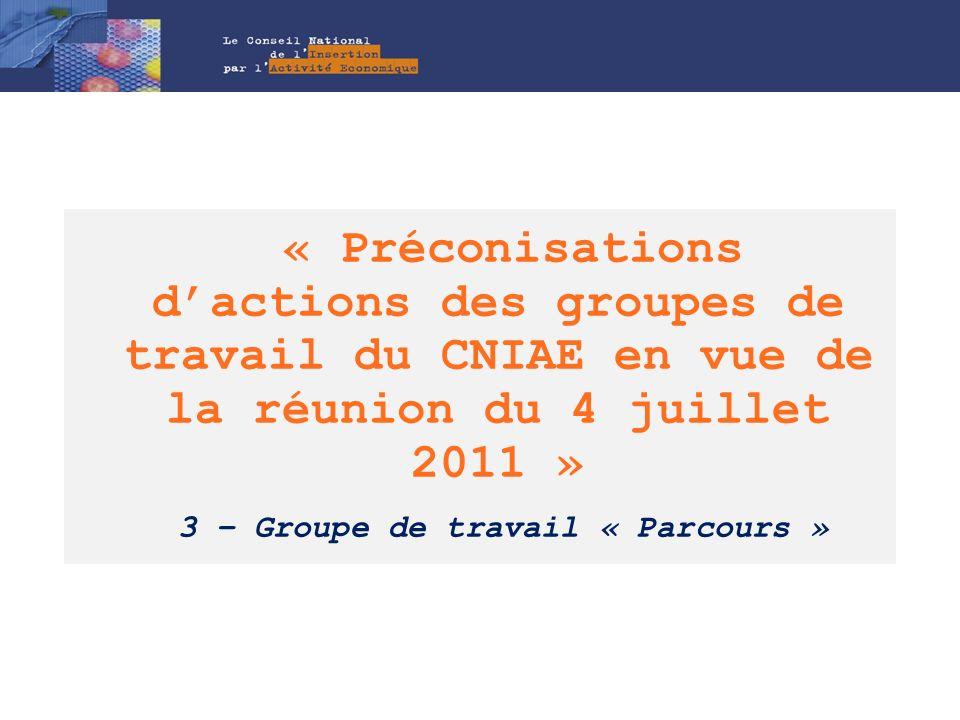 « Préconisations d'actions des groupes de travail du CNIAE en vue de la réunion du 4 juillet 2011 » 3 – Groupe de travail « Parcours »