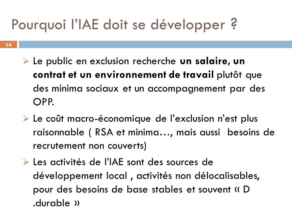 Pourquoi l'IAE doit se développer