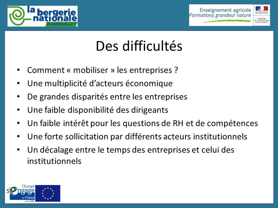 Des difficultés Comment « mobiliser » les entreprises
