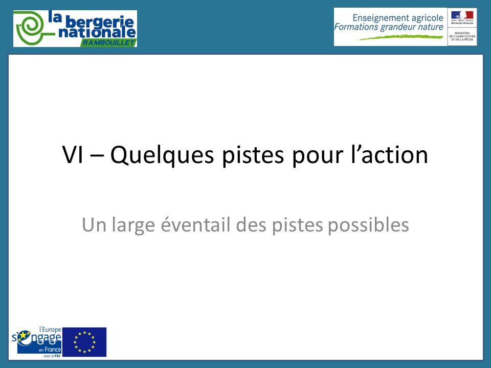 VI – Quelques pistes pour l'action