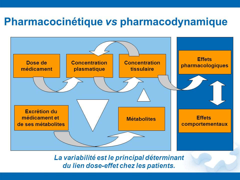 Pharmacocinétique vs pharmacodynamique