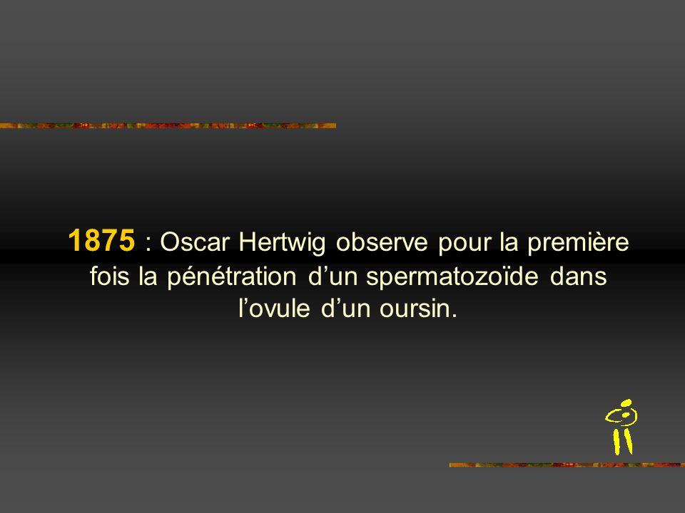 1875 : Oscar Hertwig observe pour la première fois la pénétration d'un spermatozoïde dans l'ovule d'un oursin.