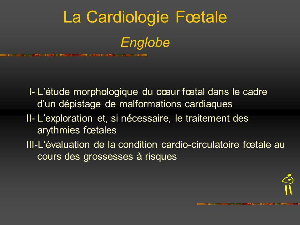 La Cardiologie Fœtale Englobe
