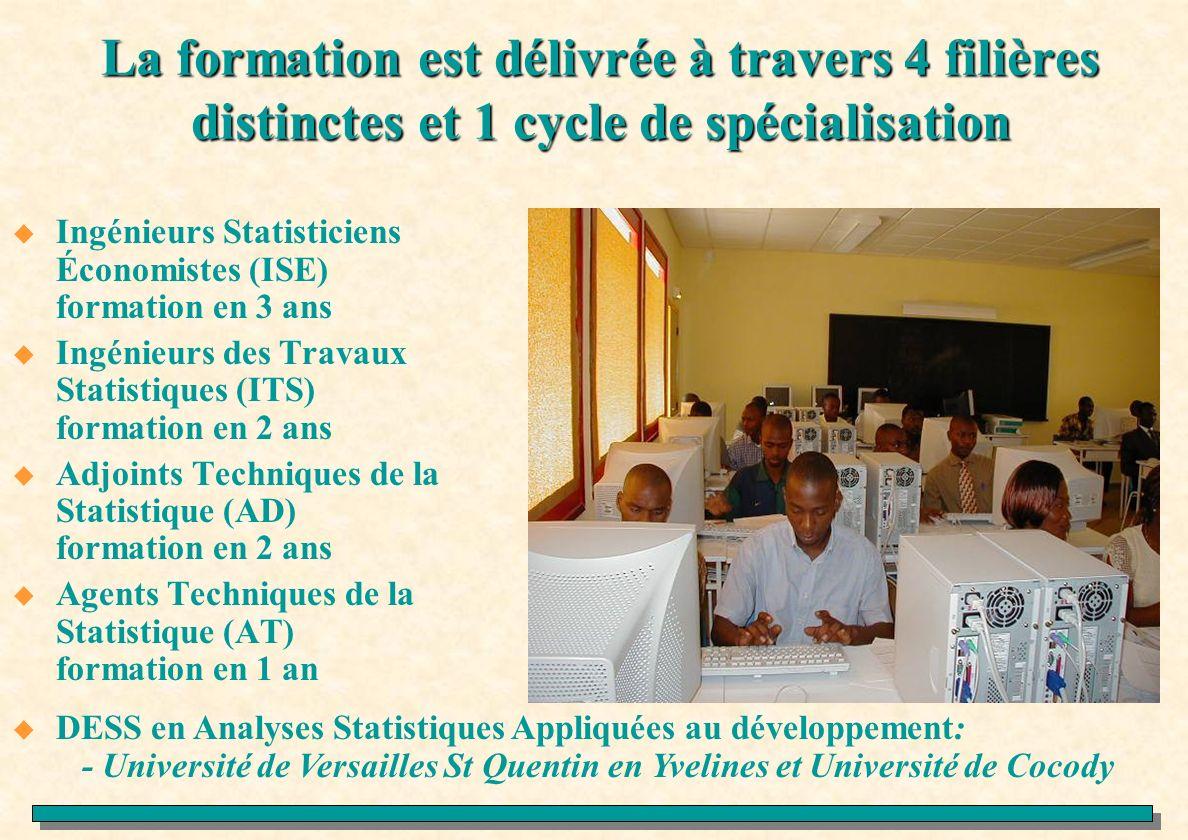La formation est délivrée à travers 4 filières distinctes et 1 cycle de spécialisation