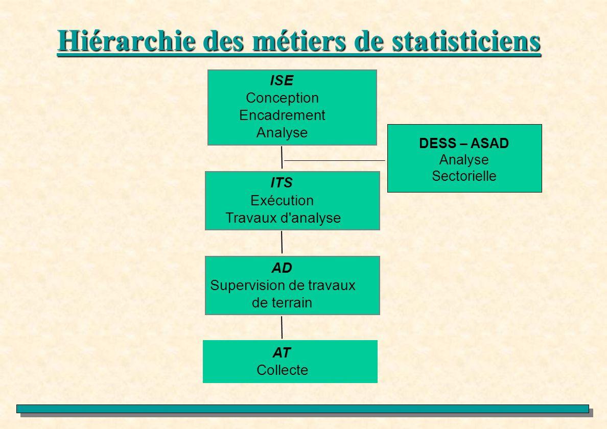 Hiérarchie des métiers de statisticiens