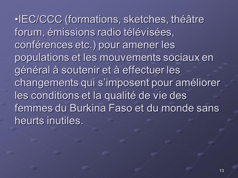 IEC/CCC (formations, sketches, théâtre forum, émissions radio télévisées, conférences etc.) pour amener les populations et les mouvements sociaux en général à soutenir et à effectuer les changements qui s'imposent pour améliorer les conditions et la qualité de vie des femmes du Burkina Faso et du monde sans heurts inutiles.