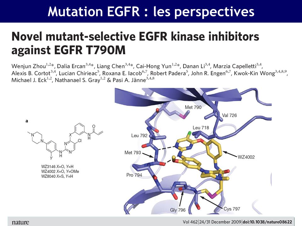 Mutation EGFR : les perspectives