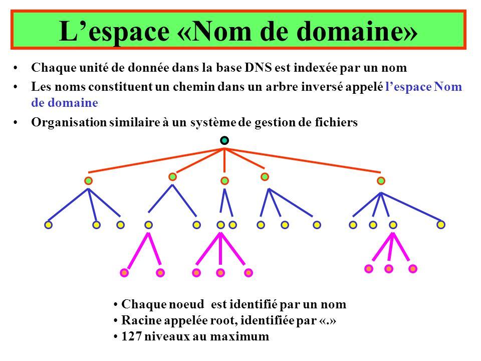 L'espace «Nom de domaine»