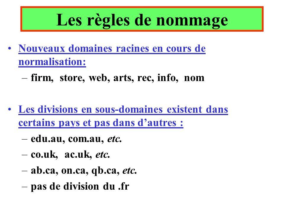 Les règles de nommage Nouveaux domaines racines en cours de normalisation: firm, store, web, arts, rec, info, nom.