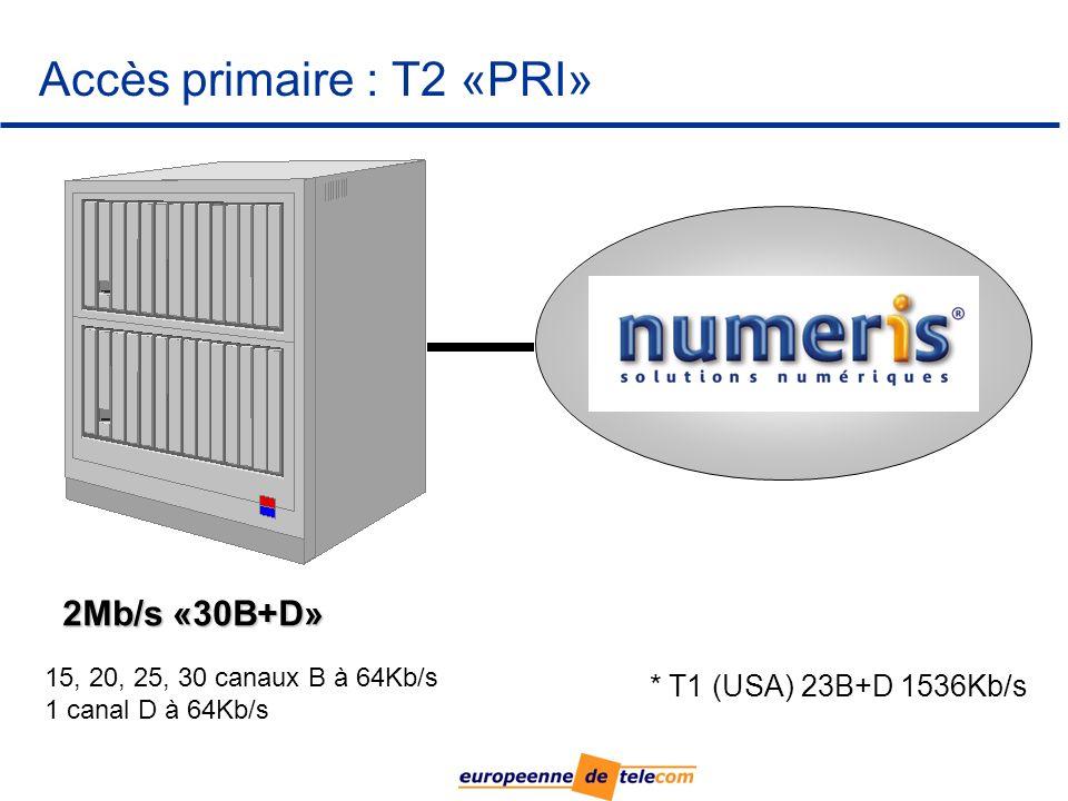 Accès primaire : T2 «PRI»