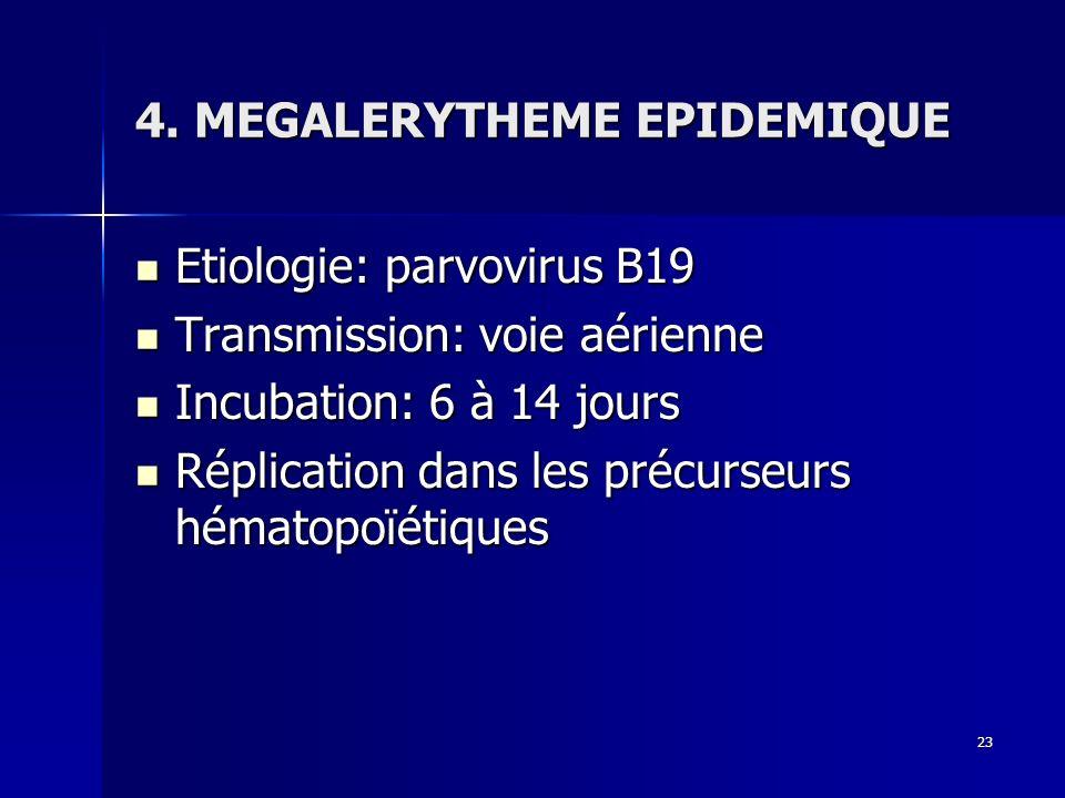 4. MEGALERYTHEME EPIDEMIQUE