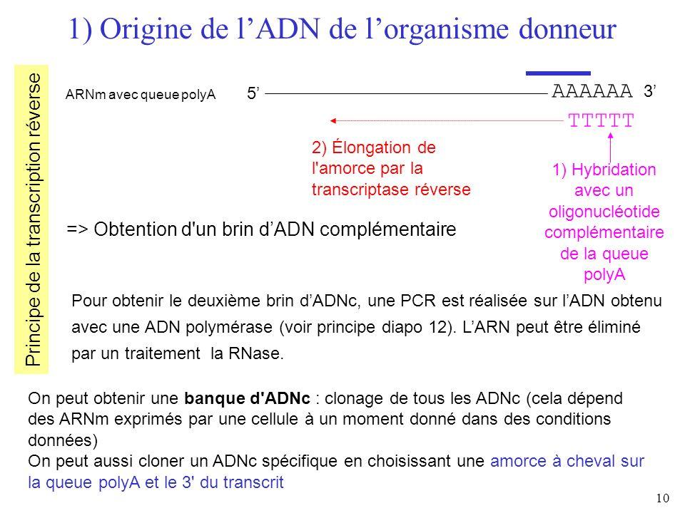 1) Origine de l'ADN de l'organisme donneur