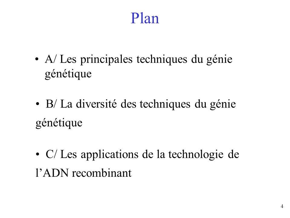 Plan A/ Les principales techniques du génie génétique