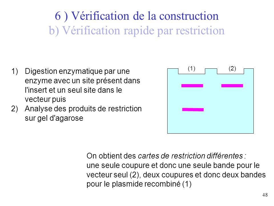 6 ) Vérification de la construction b) Vérification rapide par restriction