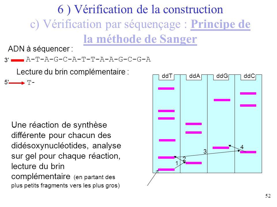 6 ) Vérification de la construction c) Vérification par séquençage : Principe de la méthode de Sanger