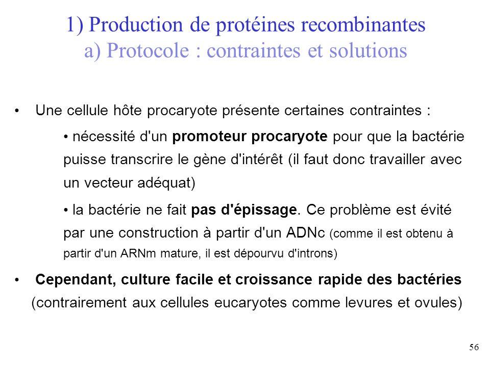 1) Production de protéines recombinantes a) Protocole : contraintes et solutions