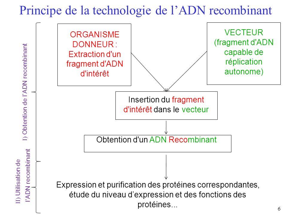 Principe de la technologie de l'ADN recombinant
