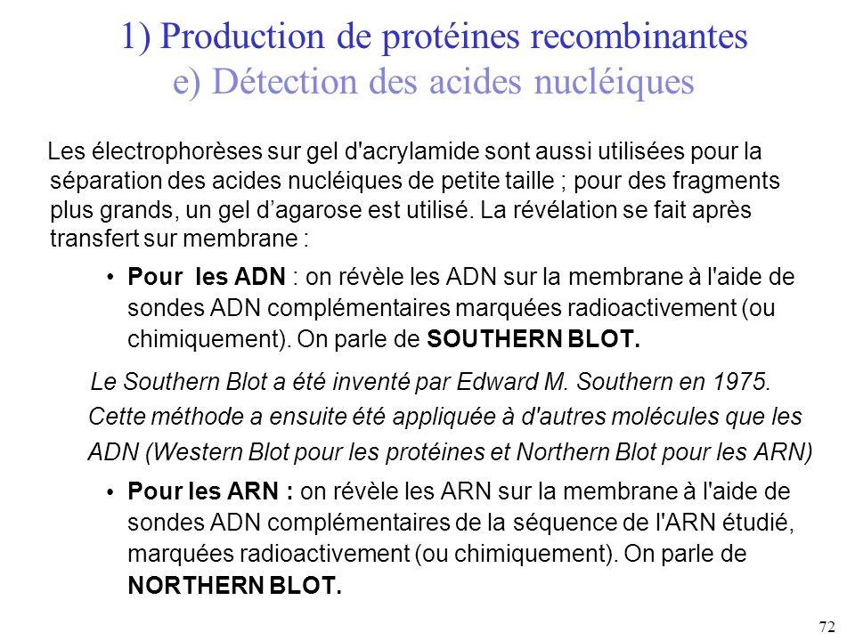 1) Production de protéines recombinantes e) Détection des acides nucléiques