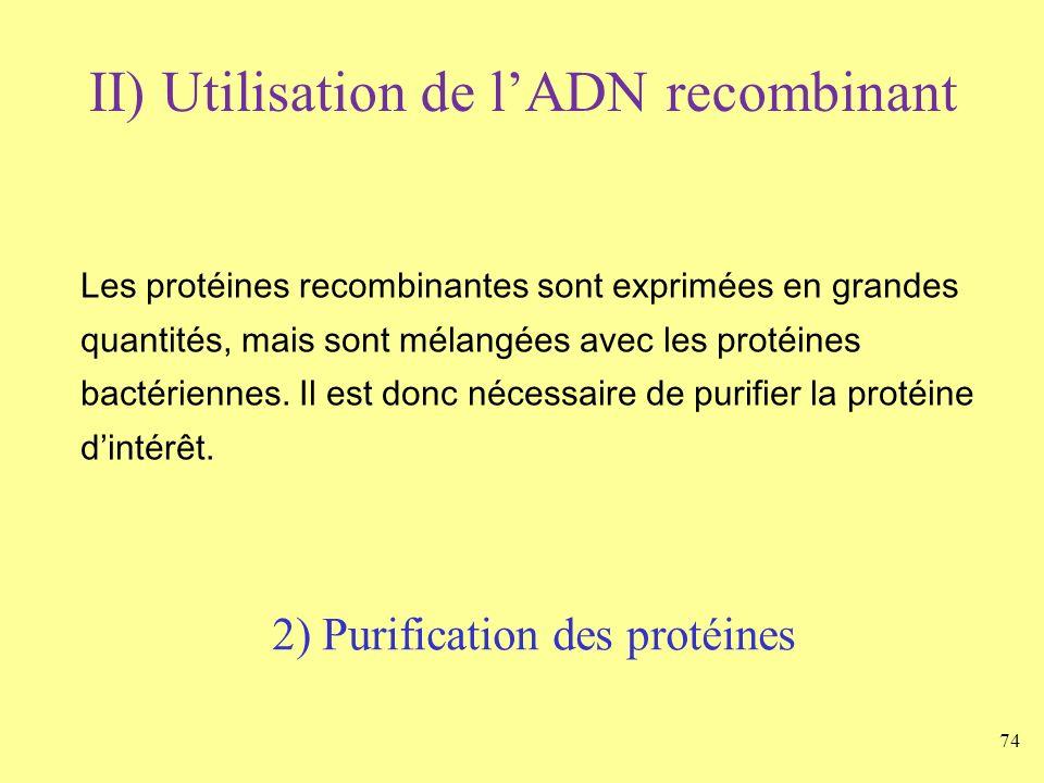 2) Purification des protéines