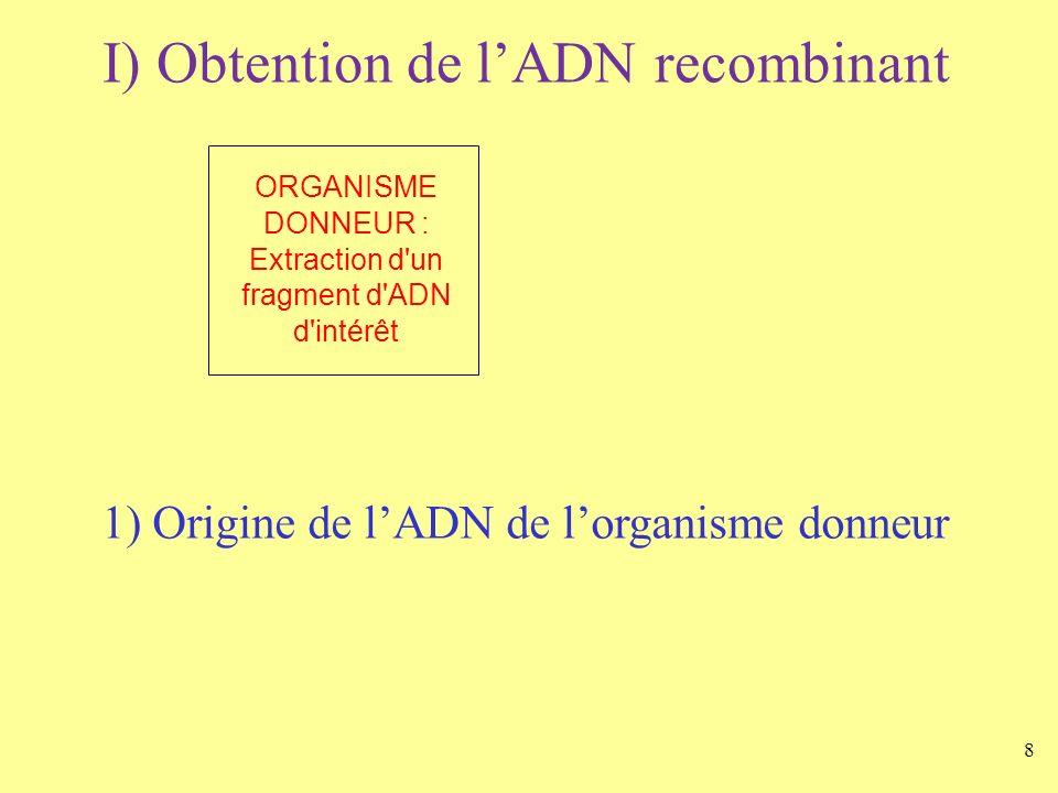 ORGANISME DONNEUR : Extraction d un fragment d ADN d intérêt