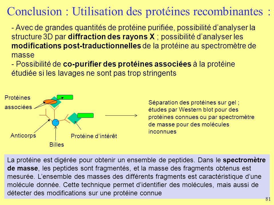 Conclusion : Utilisation des protéines recombinantes :