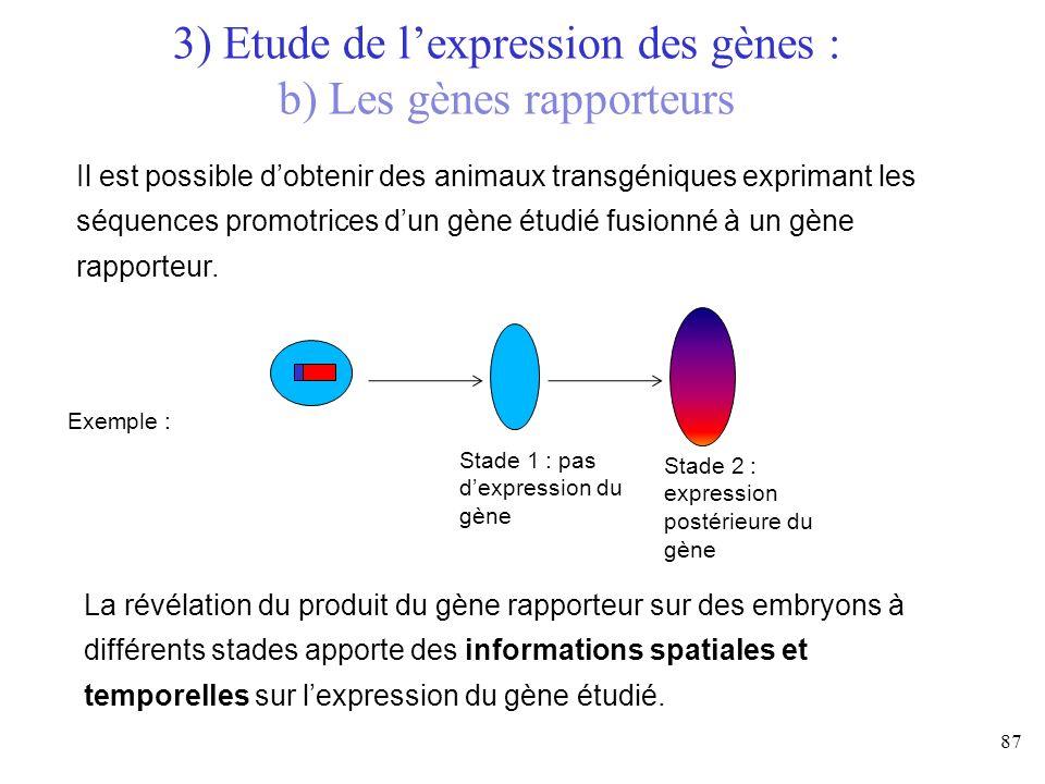 3) Etude de l'expression des gènes : b) Les gènes rapporteurs