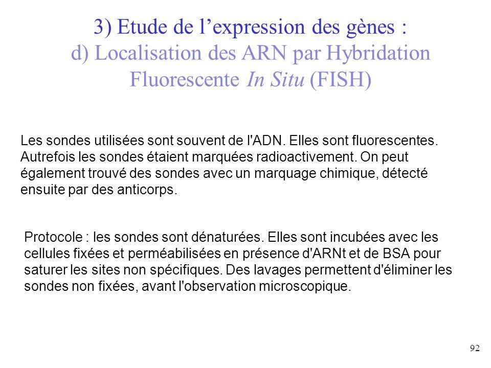 3) Etude de l'expression des gènes :