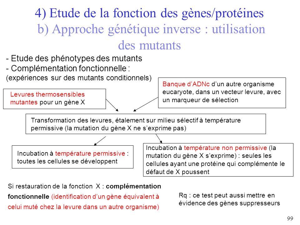 4) Etude de la fonction des gènes/protéines b) Approche génétique inverse : utilisation des mutants