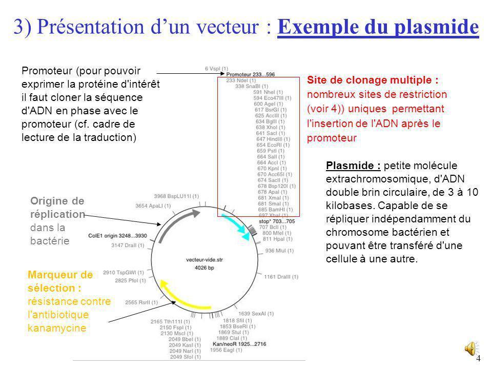 3) Présentation d'un vecteur : Exemple du plasmide