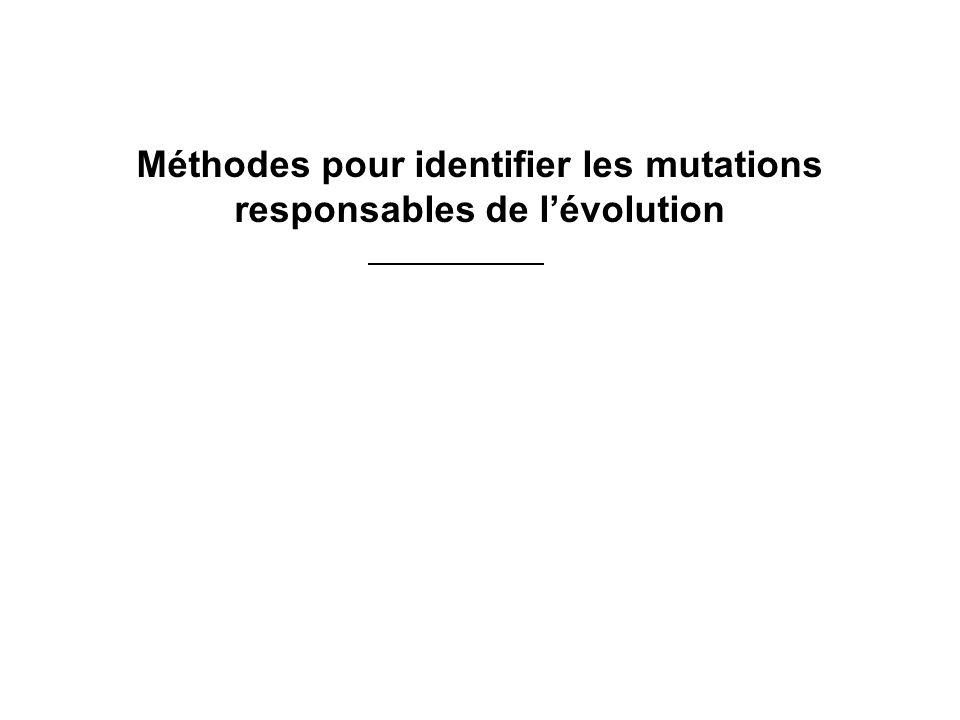 Méthodes pour identifier les mutations responsables de l'évolution
