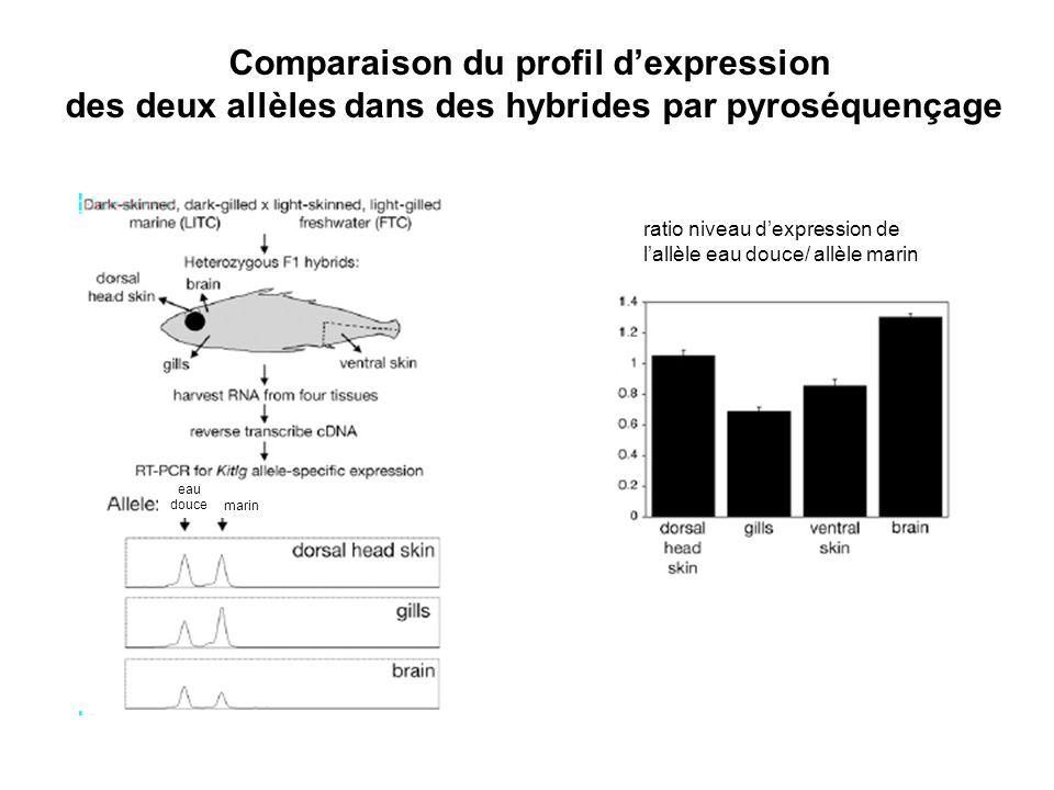 Comparaison du profil d'expression