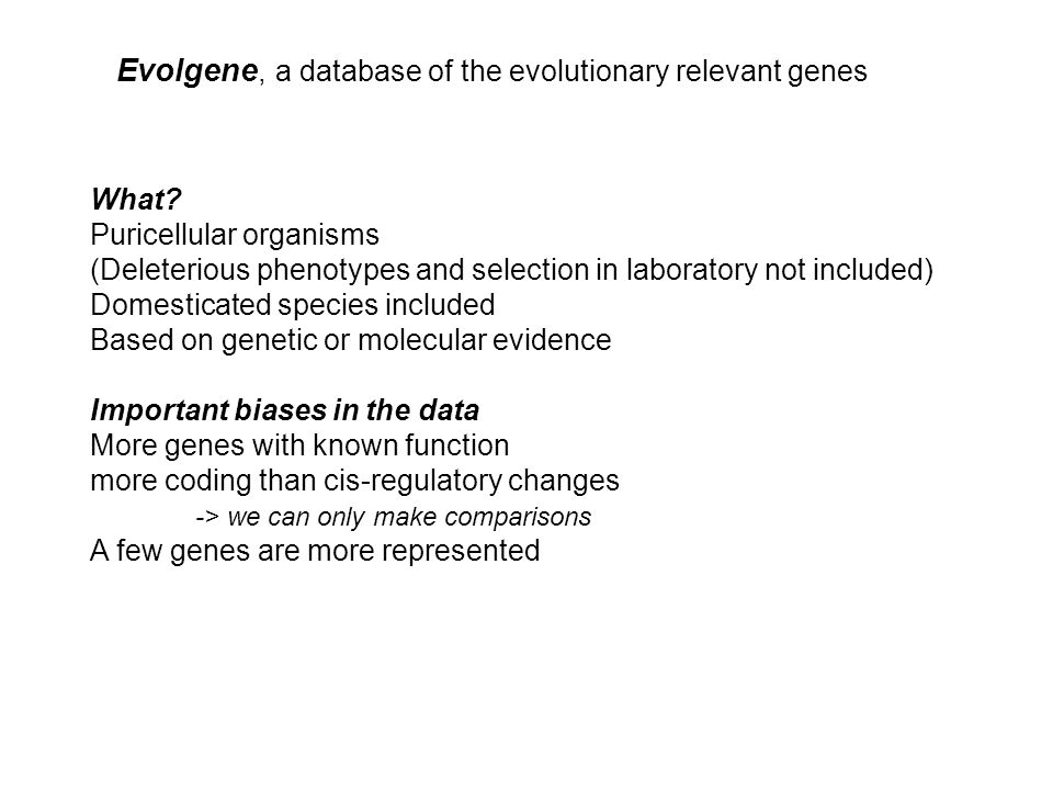 Evolgene, a database of the evolutionary relevant genes