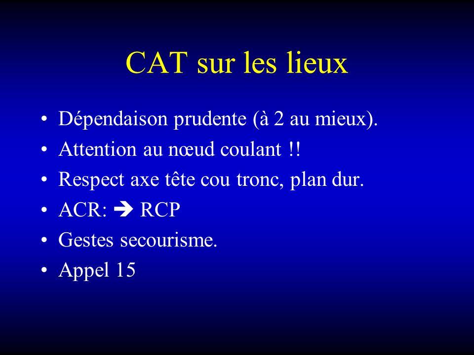 CAT sur les lieux Dépendaison prudente (à 2 au mieux).