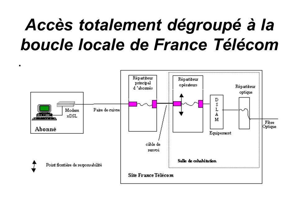 Accès totalement dégroupé à la boucle locale de France Télécom