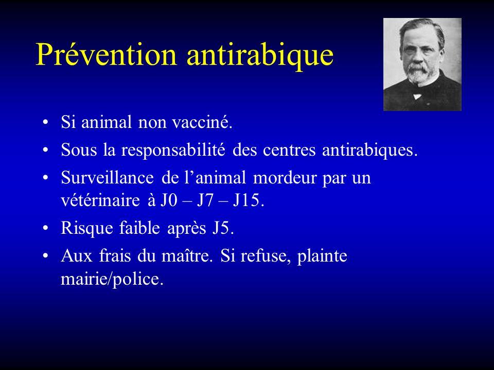 Prévention antirabique