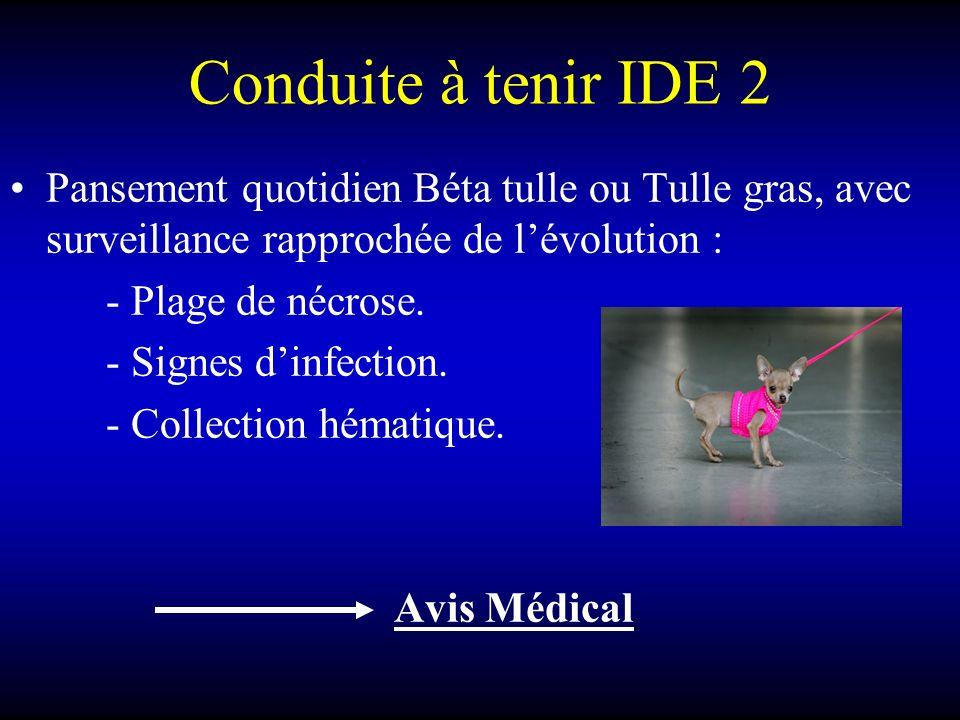 Conduite à tenir IDE 2 Pansement quotidien Béta tulle ou Tulle gras, avec surveillance rapprochée de l'évolution :