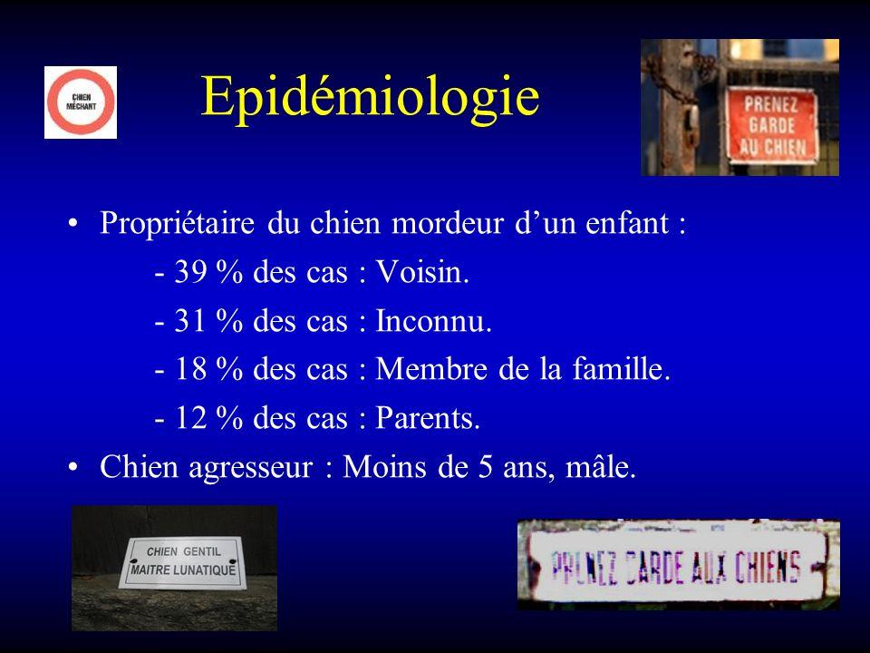 Epidémiologie Propriétaire du chien mordeur d'un enfant :